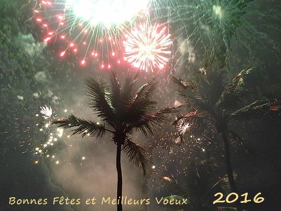 w-2016-voeux-0476